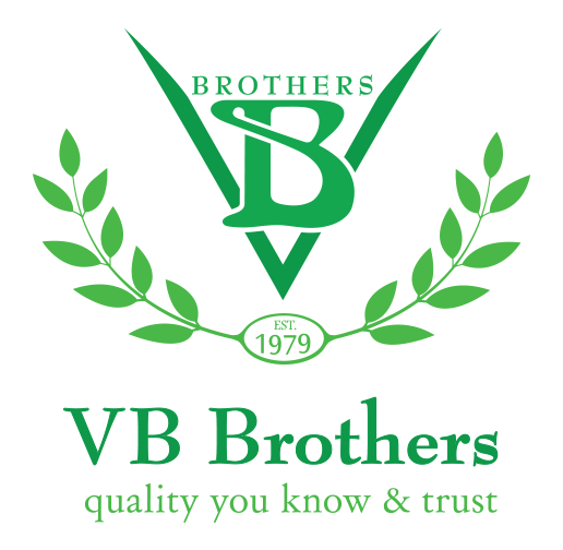 VB Brothers
